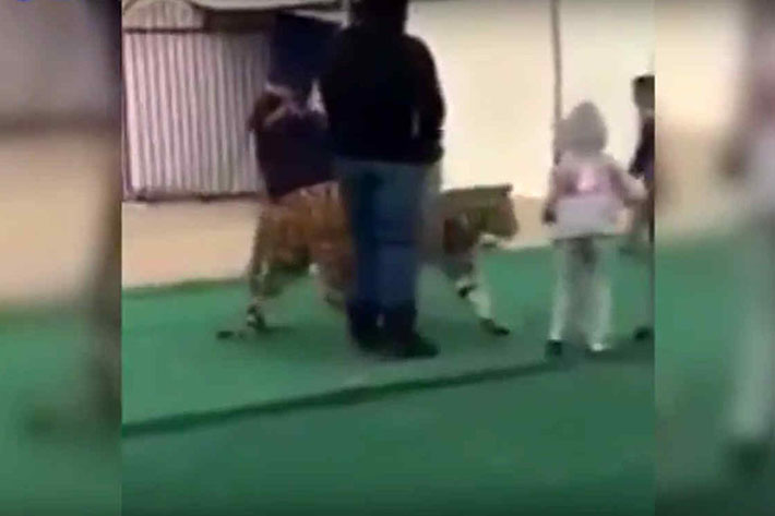 tigre-ataca-nina-2