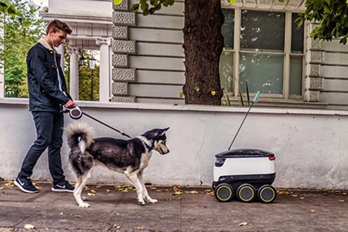 robots_domicilio